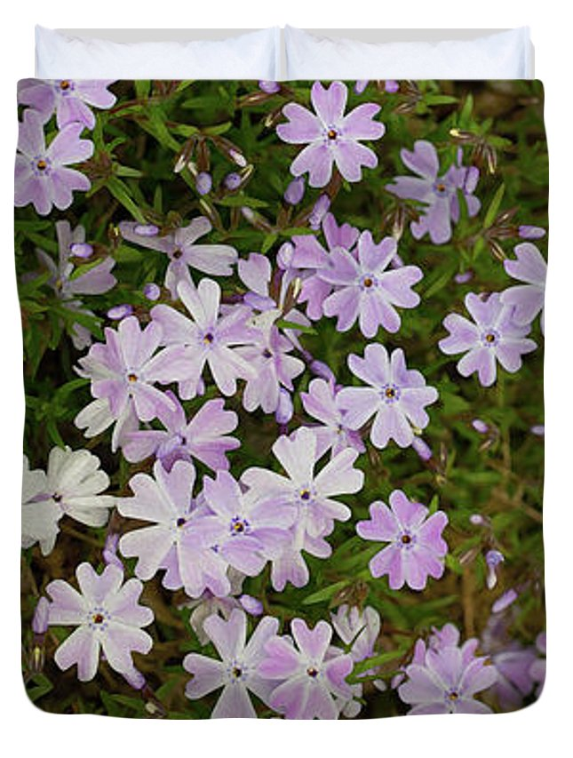 Green Duvet Cover featuring the photograph Tiny Phlox by Emily Johnson