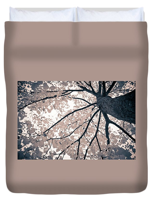 Spray Duvet Cover featuring the photograph Tree Branches by Gianlucabartoli