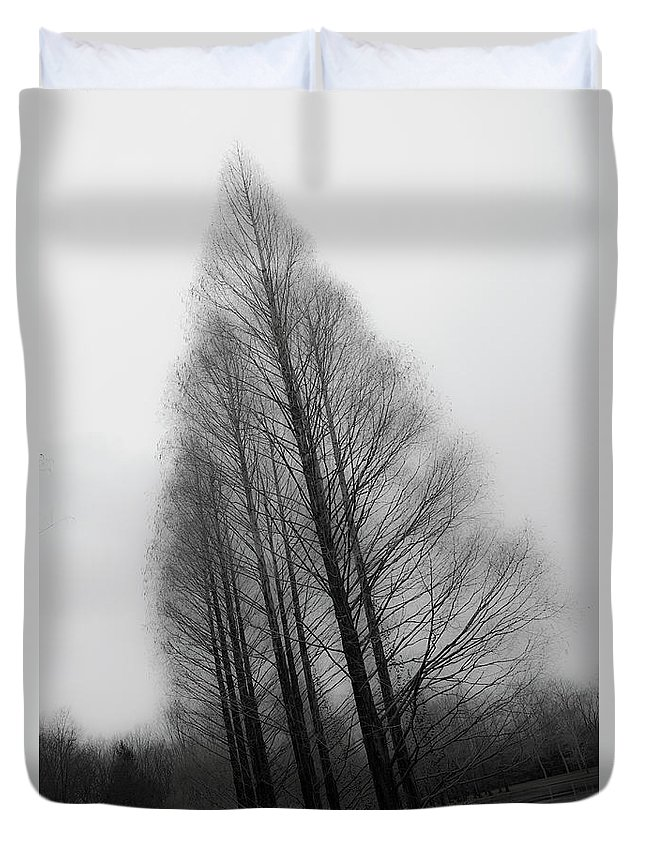 Tranquility Duvet Cover featuring the photograph Trees In Winter Without Leaves by Marie Hickman