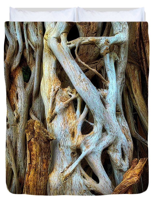Twisted Duvet Cover featuring the photograph Twisted Tree Limbs by Garry Gay