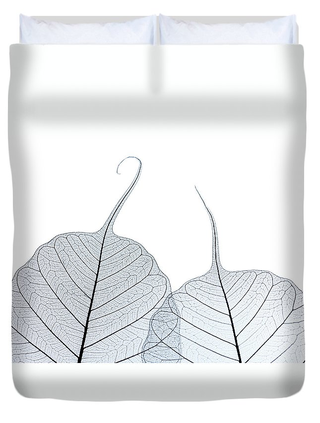 Tranquility Duvet Cover featuring the photograph Two Leaf Skeletons by Peter Dazeley
