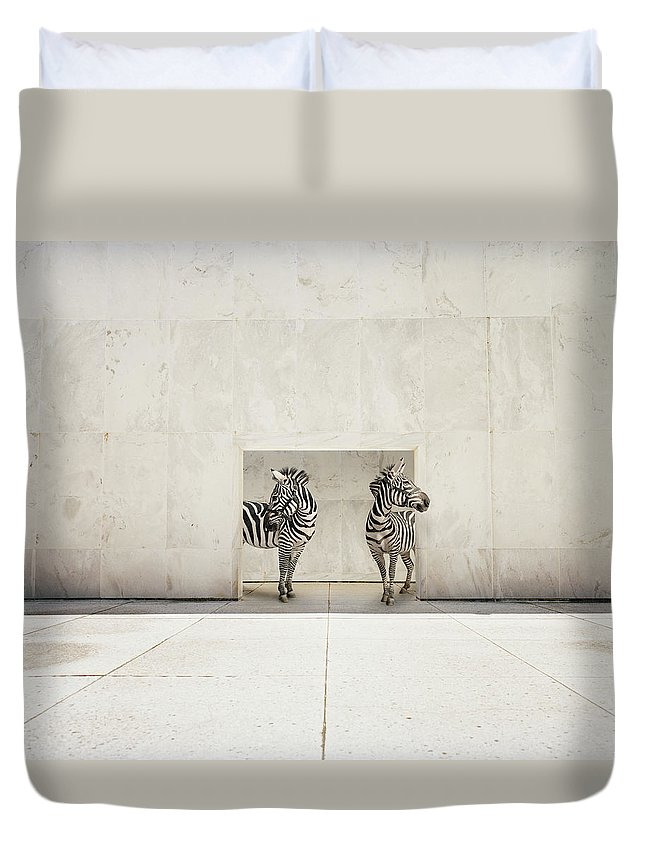Out Of Context Duvet Cover featuring the photograph Two Zebras At Doorway Of Large White by Matthias Clamer