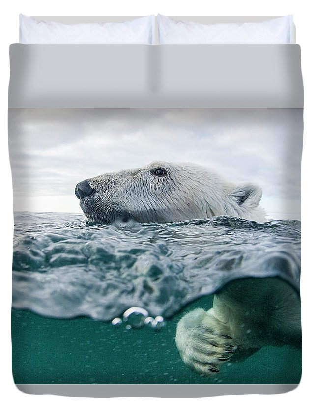 Paw Duvet Cover featuring the photograph Underwater Polar Bear In Hudson Bay by Paul Souders