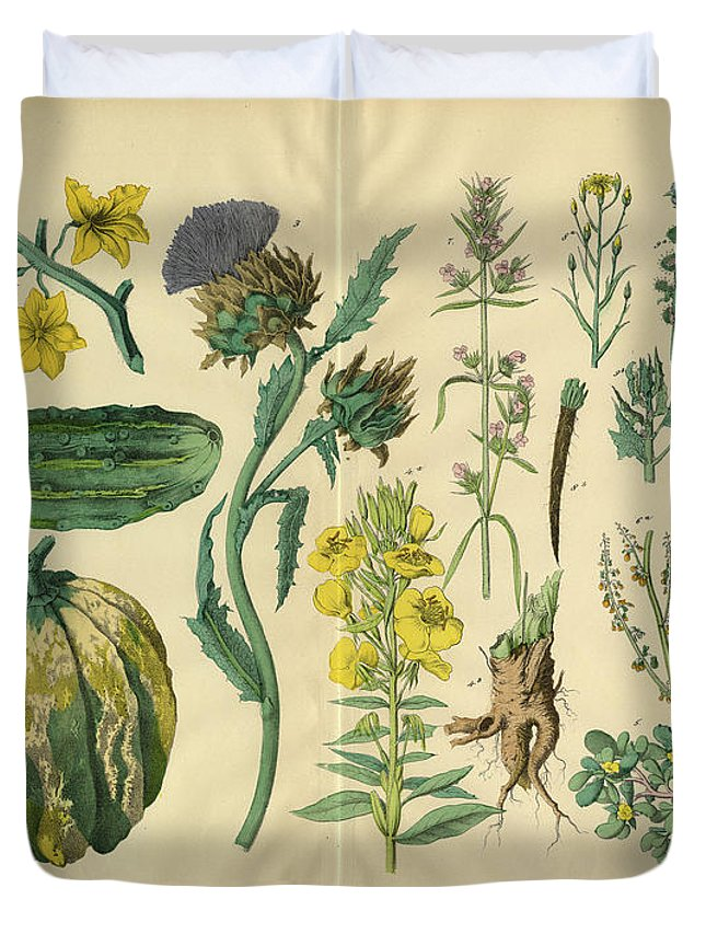 Evening Primrose Duvet Cover featuring the digital art Vegetables And Flowers Of The Garden by Bauhaus1000