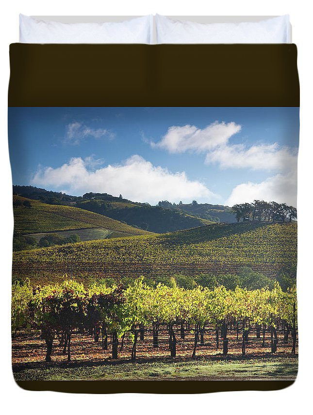 Sonoma County Duvet Cover featuring the photograph Vineyards Autumn Time In Sonoma Valley by Darrell Gulin