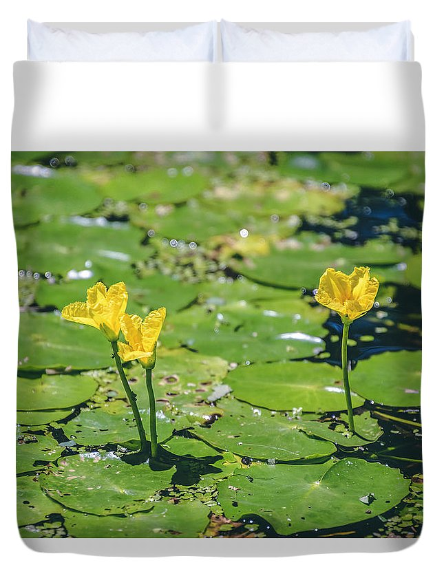 Water Lily Duvet Cover featuring the photograph Water Garden by Sandi Kroll