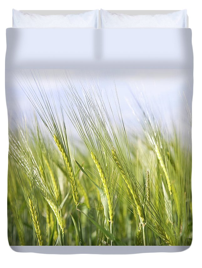 Scenics Duvet Cover featuring the photograph Wheat Field by Peter Chadwick Lrps