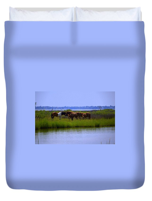 Horse Duvet Cover featuring the photograph Wild Horses Of Assateague Island by Robin Houde Photography