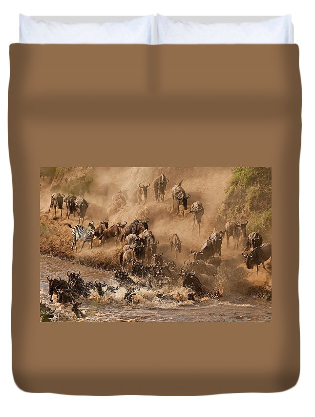 Horned Duvet Cover featuring the photograph Wildebeest And Zebra by Marsch1962uk
