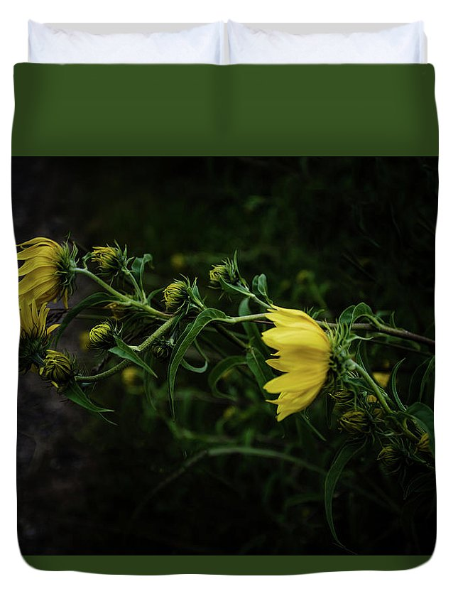 Wisconsin Duvet Cover featuring the photograph Windy Weeds by Lauri Novak