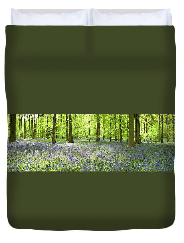 Scenics Duvet Cover featuring the photograph Wonderful Woodland by Pkfawcett