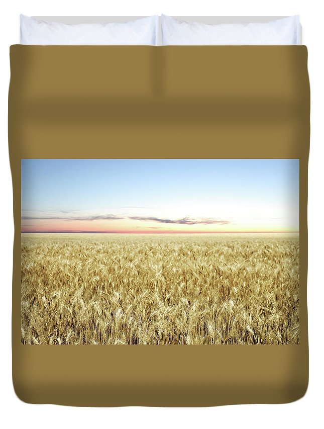 Scenics Duvet Cover featuring the photograph Xxl Wheat Field Twilight by Sharply done