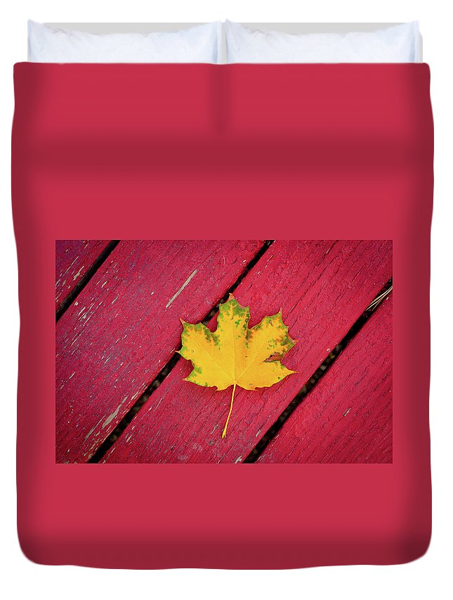 Outdoors Duvet Cover featuring the photograph Yellow Maple Leaf Against A Red Deck by Photo By Sam Scholes