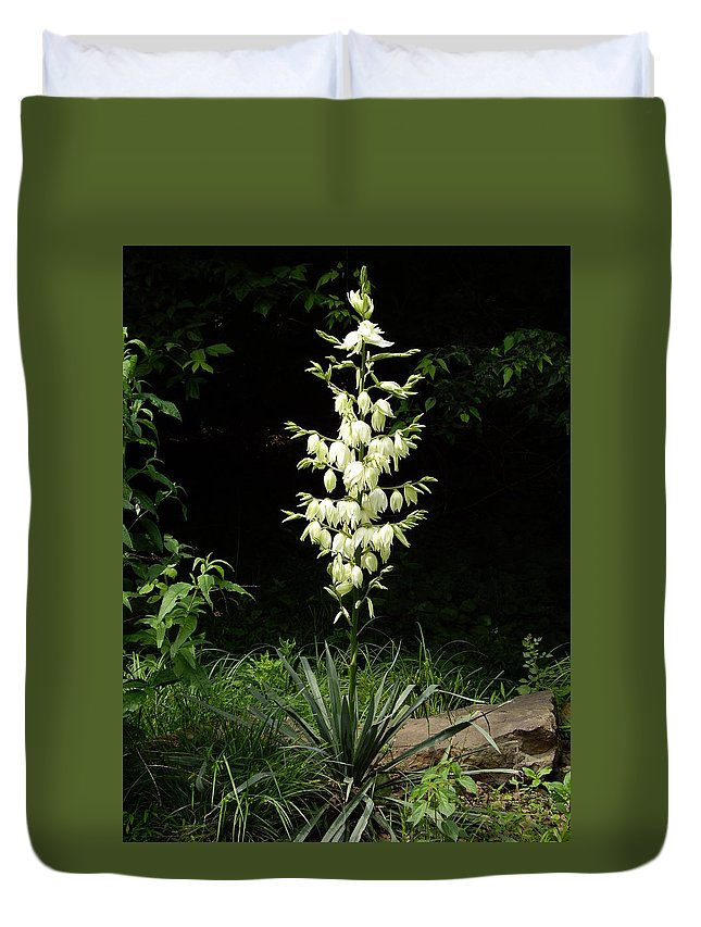 Yucca Duvet Cover featuring the photograph Yucca Blossoms by Nancy Ayanna Wyatt