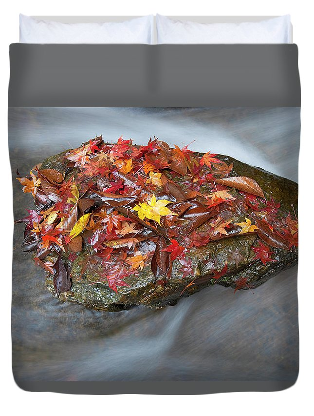 Tranquility Duvet Cover featuring the photograph Zen Garden At Eikan-do Temple In Kyoto by B. Tanaka