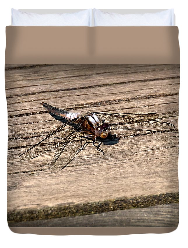 Insects Duvet Cover featuring the photograph 20-0609-0227 by Anthony Roma