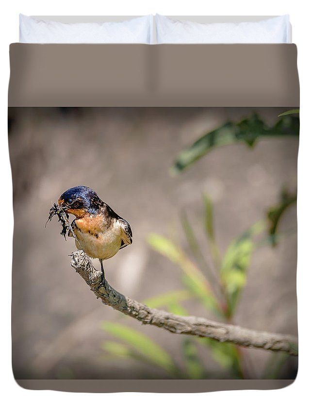 Bird Duvet Cover featuring the photograph 20-0616-0528 by Anthony Roma