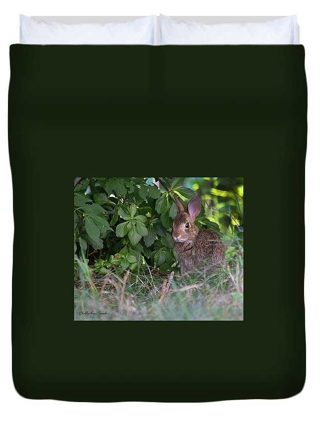 Duvet Cover featuring the photograph Baby Bunny by ChelleAnne Paradis