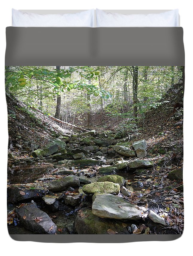 Fall Foliage Duvet Cover featuring the photograph Bark Rocks 6 by Chris Naggy