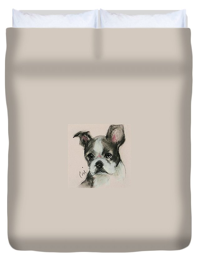 Pastel Duvet Cover featuring the drawing Bostonian by Cori Solomon