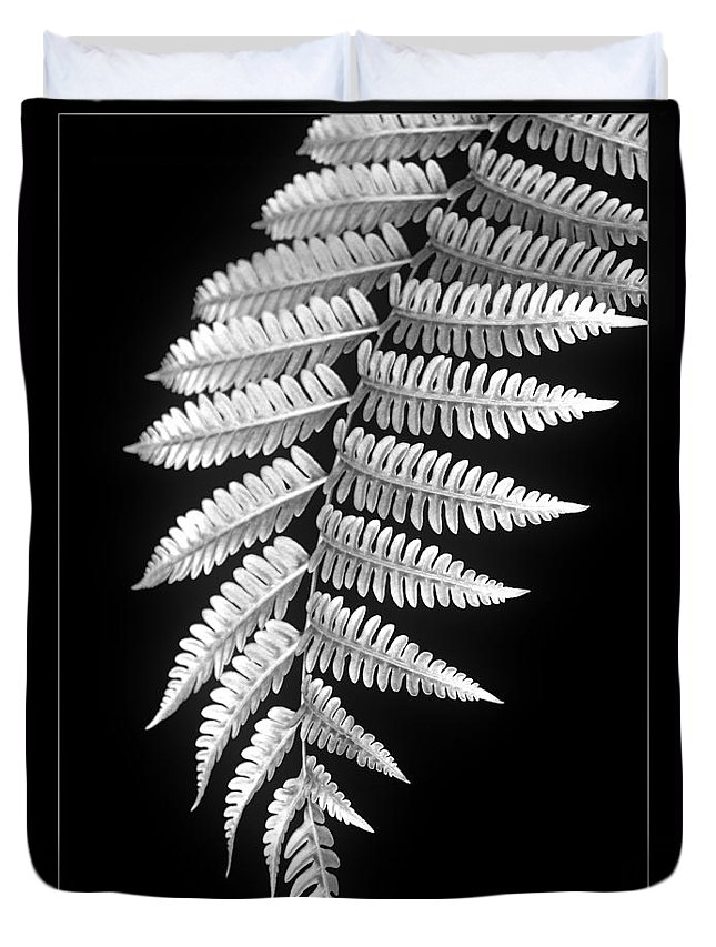 Australia; Floral Duvet Cover featuring the photograph Fern Dance by Holly Kempe