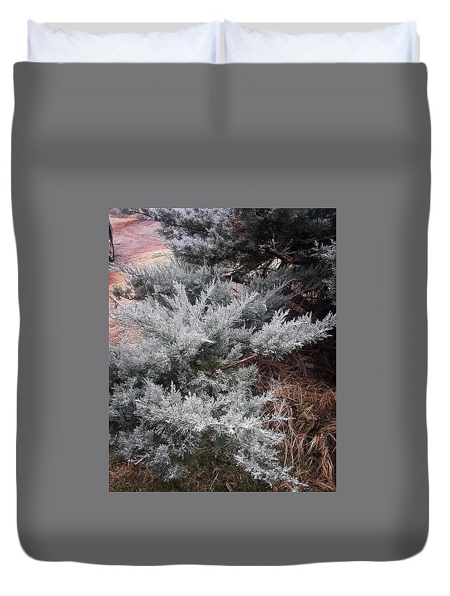 Scenery Duvet Cover featuring the photograph First Frost by Ariana Torralba