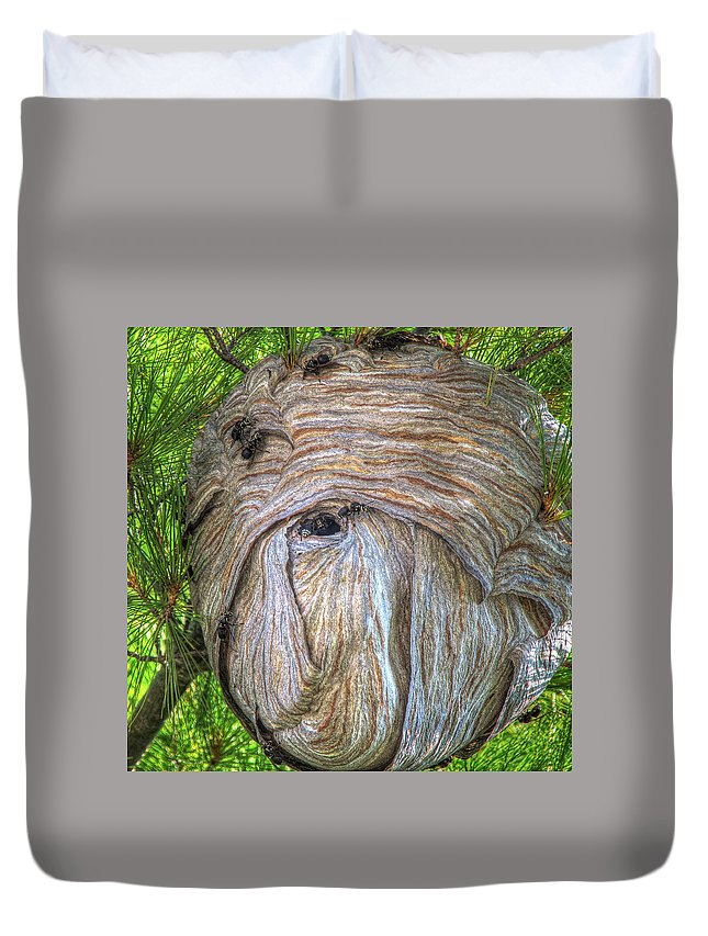 Hive Duvet Cover featuring the photograph Hornet's Nest by Eden Watt