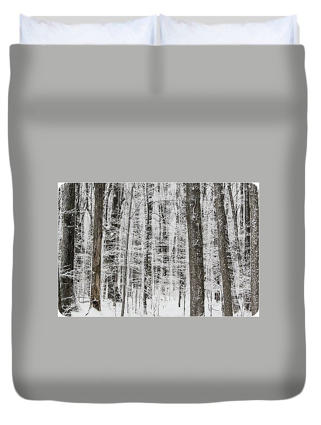 Ice Duvet Cover featuring the photograph Ice Forest by Eden Watt