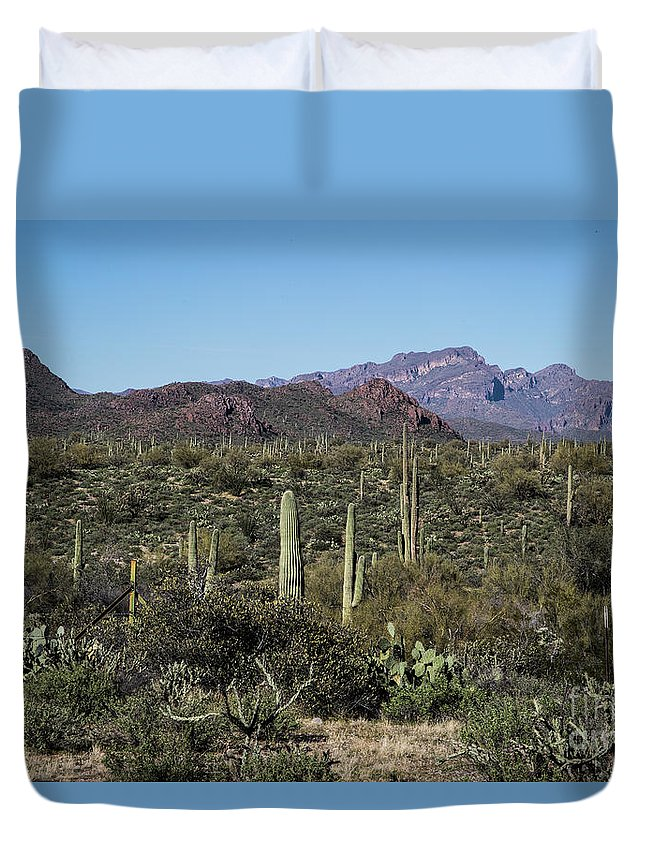 Arizona Duvet Cover featuring the photograph Into the Wilderness by Kathy McClure