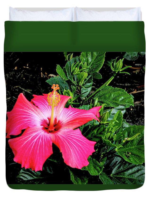 Flower Duvet Cover featuring the digital art La cayena by Daniel Cornell