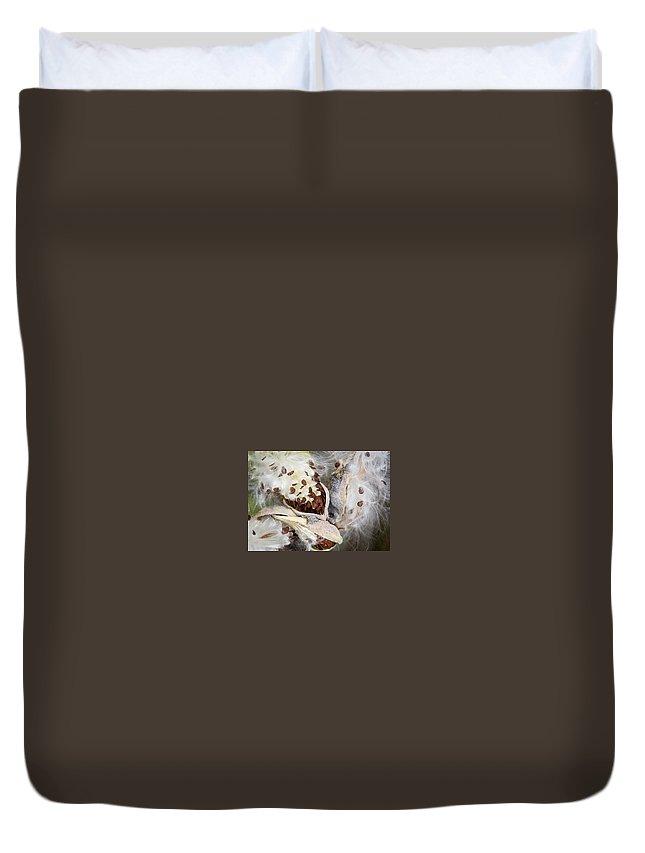 Milkweed Duvet Cover featuring the photograph Milkweed Explosion by Eden Watt
