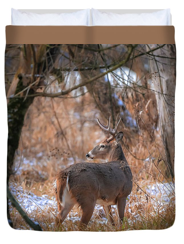 Ohio Winter Buck Duvet Cover featuring the photograph Ohio Winter Buck by Dan Sproul