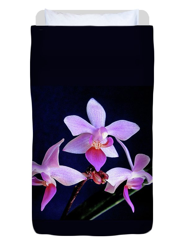 Orchids Duvet Cover featuring the photograph Orchid Ballet by Bill Morgenstern