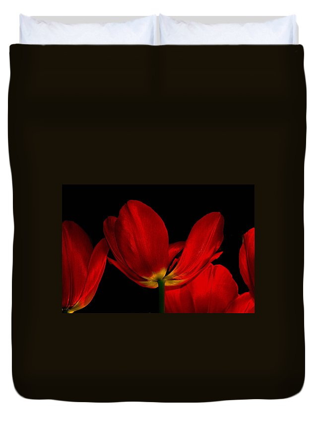 Flowers Duvet Cover featuring the photograph Red Silk by Linda Sannuti