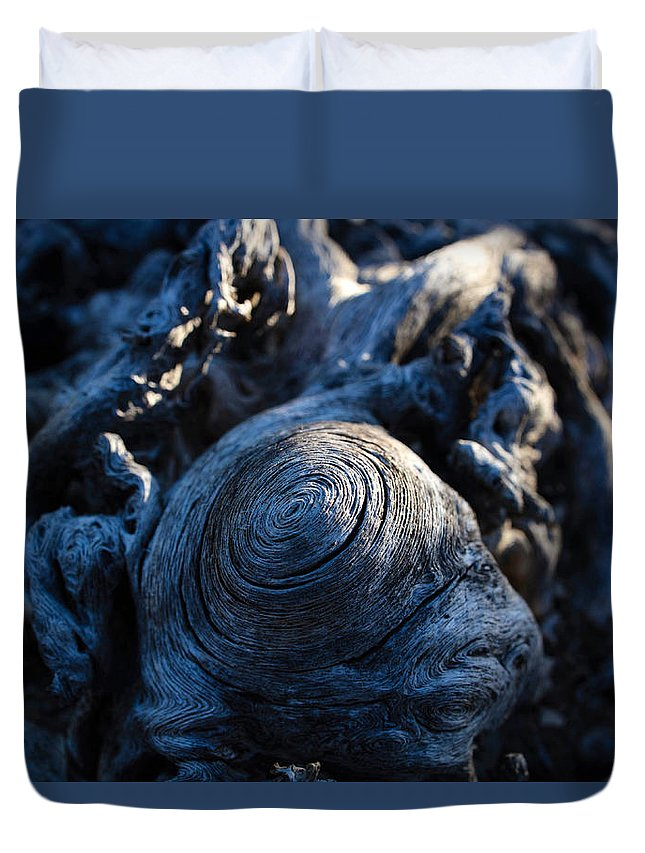 Saguaro Duvet Cover featuring the photograph Saguaro Vortex by Kati Astraeir