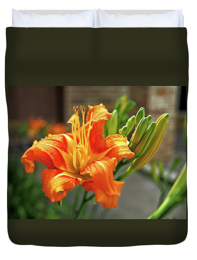Orange Duvet Cover featuring the photograph Spring Flower 14 by C Winslow Shafer