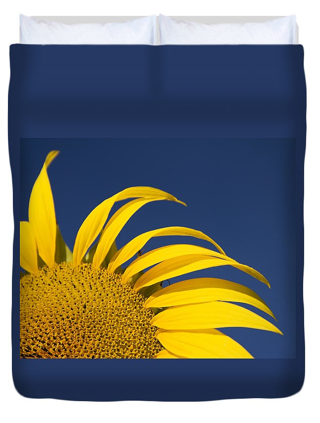 3scape Duvet Cover featuring the photograph Sunflower by Adam Romanowicz