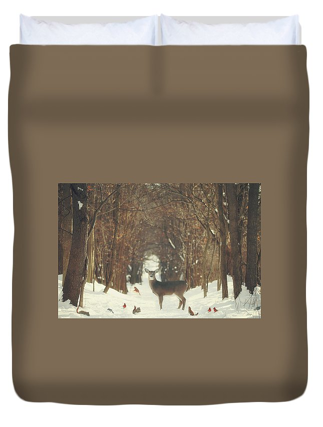 Snow Duvet Cover featuring the photograph The Forest of Snow White by Carrie Ann Grippo-Pike