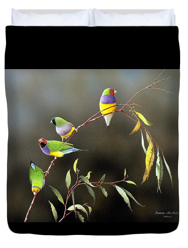 Bird Duvet Cover featuring the painting Three Guys for Every Girl - Gouldian Finches by Frances McMahon