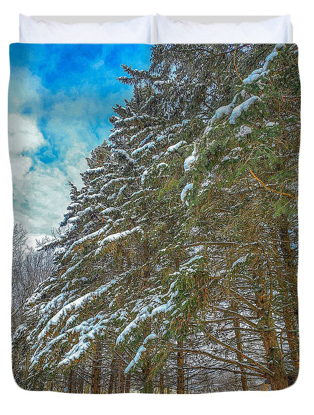 Nature Duvet Cover featuring the photograph Winter trees by M Forsell