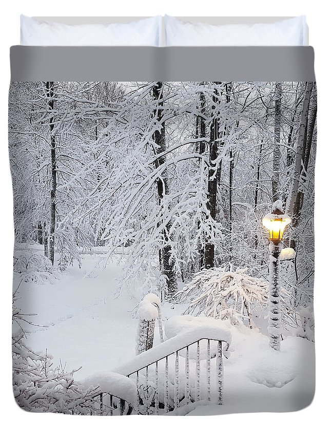 Winter Duvet Cover featuring the photograph Winter by Trevor Slauenwhite