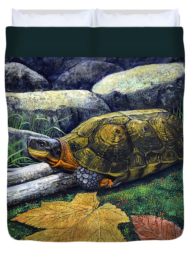 Turtles Duvet Cover featuring the painting Wood Turtle by Frank Wilson