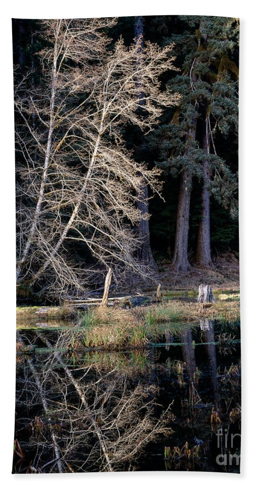 Alder Tree Hand Towel featuring the photograph Alder Tree Reflection In Pond by Tracy Knauer