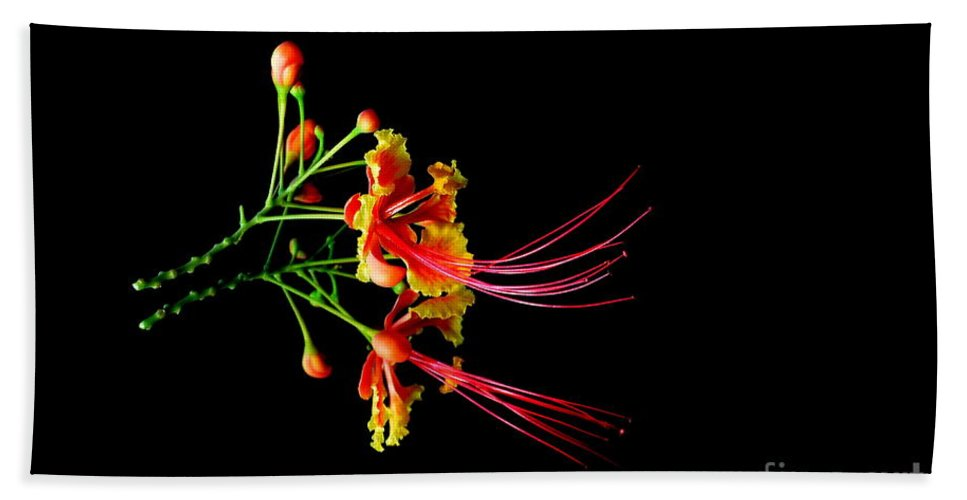 Nature Bath Sheet featuring the photograph Delicacy by Michelle Meenawong