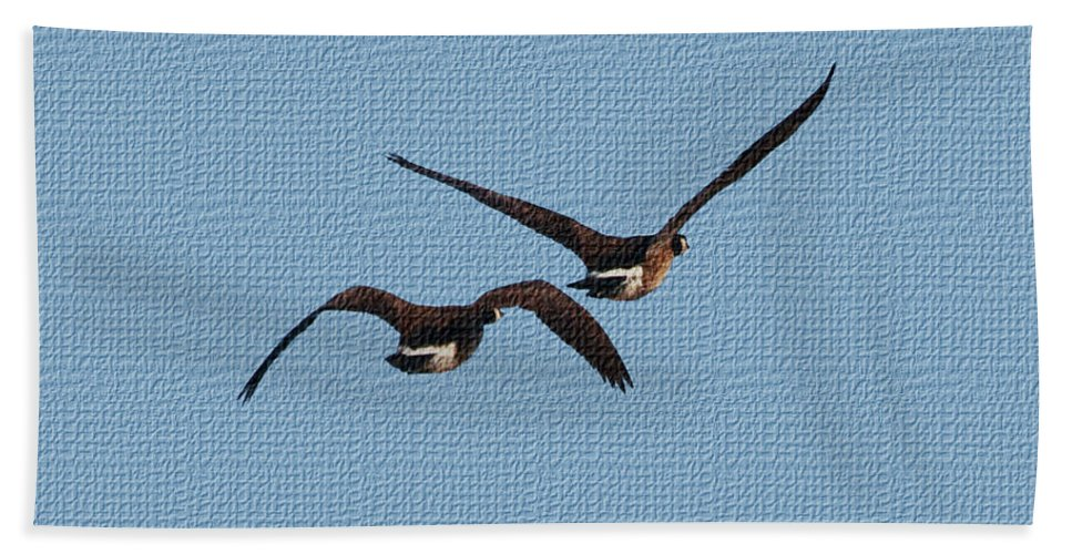 Fleeing Geese Hand Towel featuring the photograph Fleeing Geese by Tom Janca