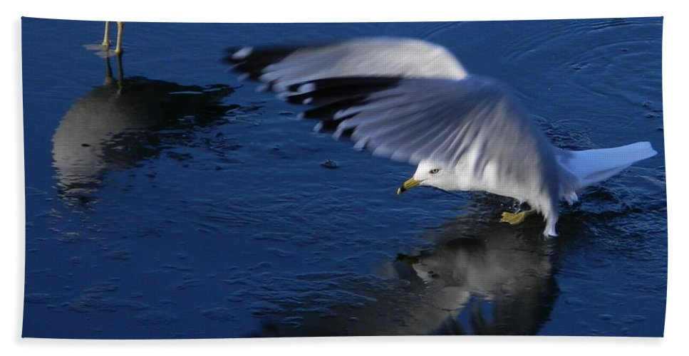 Landing On Icy Water Hand Towel featuring the photograph Landing On Icy Water by Emmy Vickers