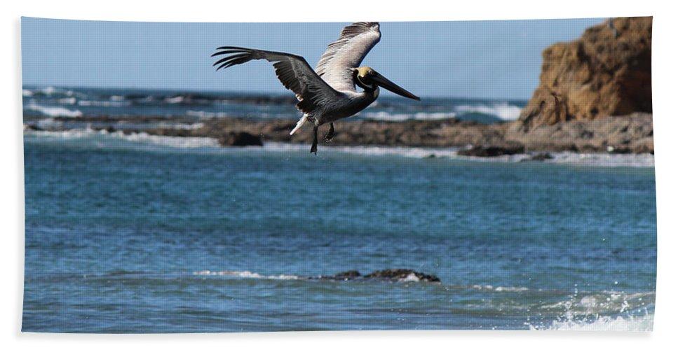Pelican Bath Sheet featuring the photograph Pelican With Wet Feet by Lorraine Baum