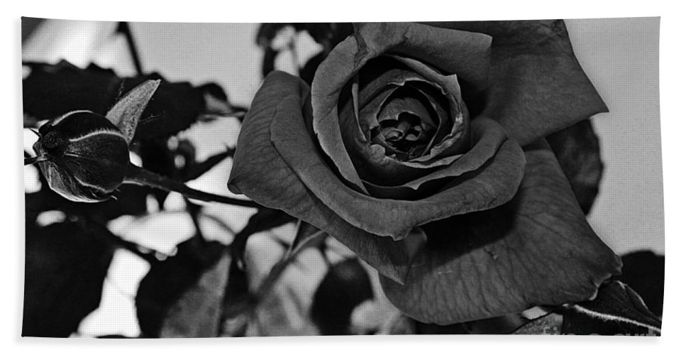 One Rose Bath Sheet featuring the photograph Rose In Black And White by Barbara Griffin