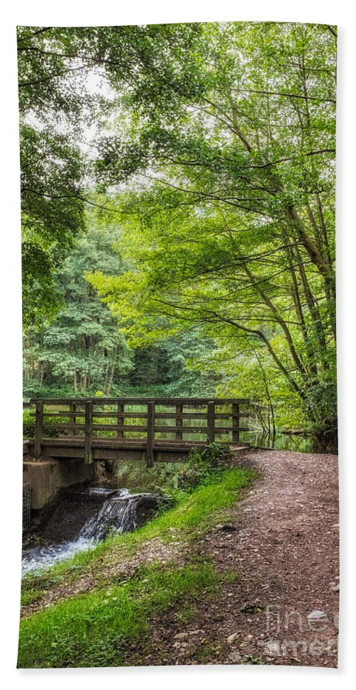 Cannock Chase Hand Towel featuring the photograph The Bridge Birches Valley Cannock Chase by Ann Garrett