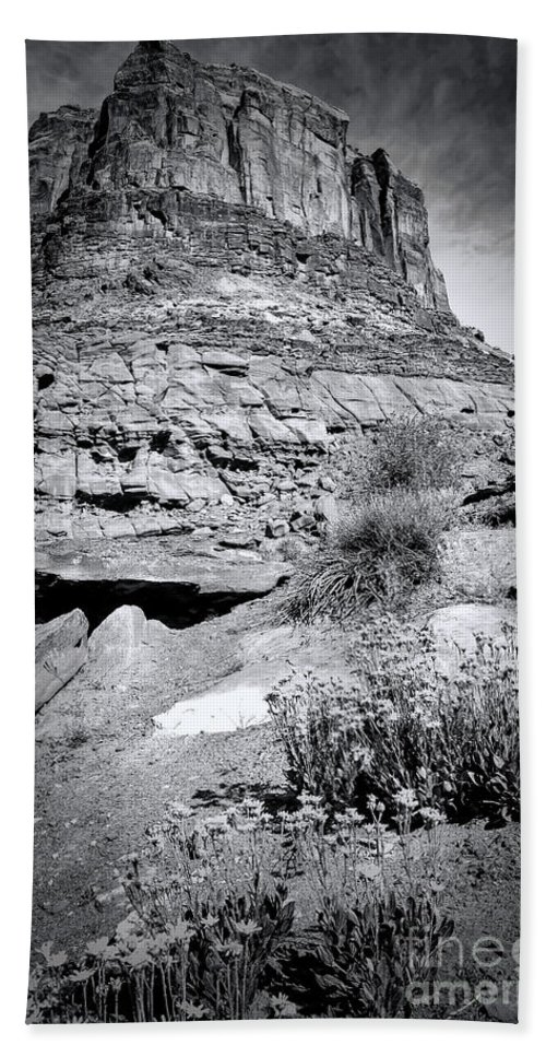 Canyonland Hand Towel featuring the photograph 0715 Guardian Of Canyonland by Steve Sturgill
